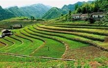 《土地管理法》最新全文发布,这两大要点将力保农民耕地利益!